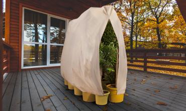 Housses d'hivernage pour plantes