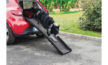 Rampe de chargement pour chien