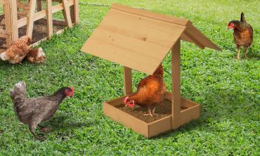 Bain de poussière en bois pour poules avec toit
