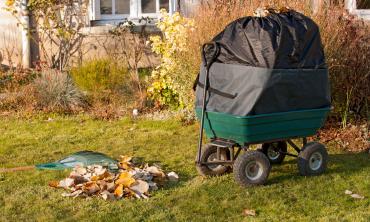 Chariot de jardin + Sac...