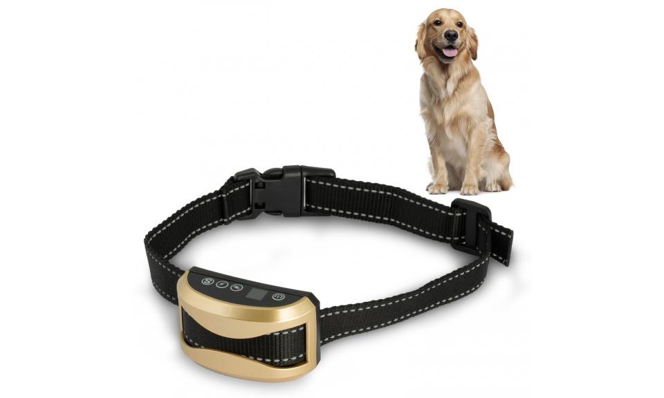 Collier pour chien anti-aboiement