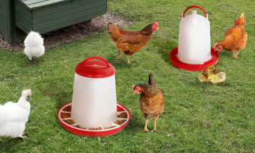 Pack complet grand modèle - mangeoire 7.5 kg + abreuvoir 10 L pour poules