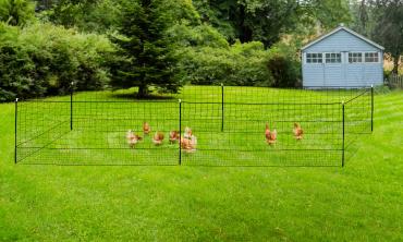 Kit clôture Nomade pour poules 12m²