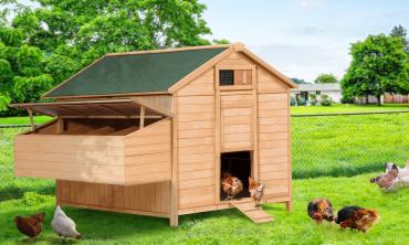Poulailler chalet avec pondoir 15 - 18 poules